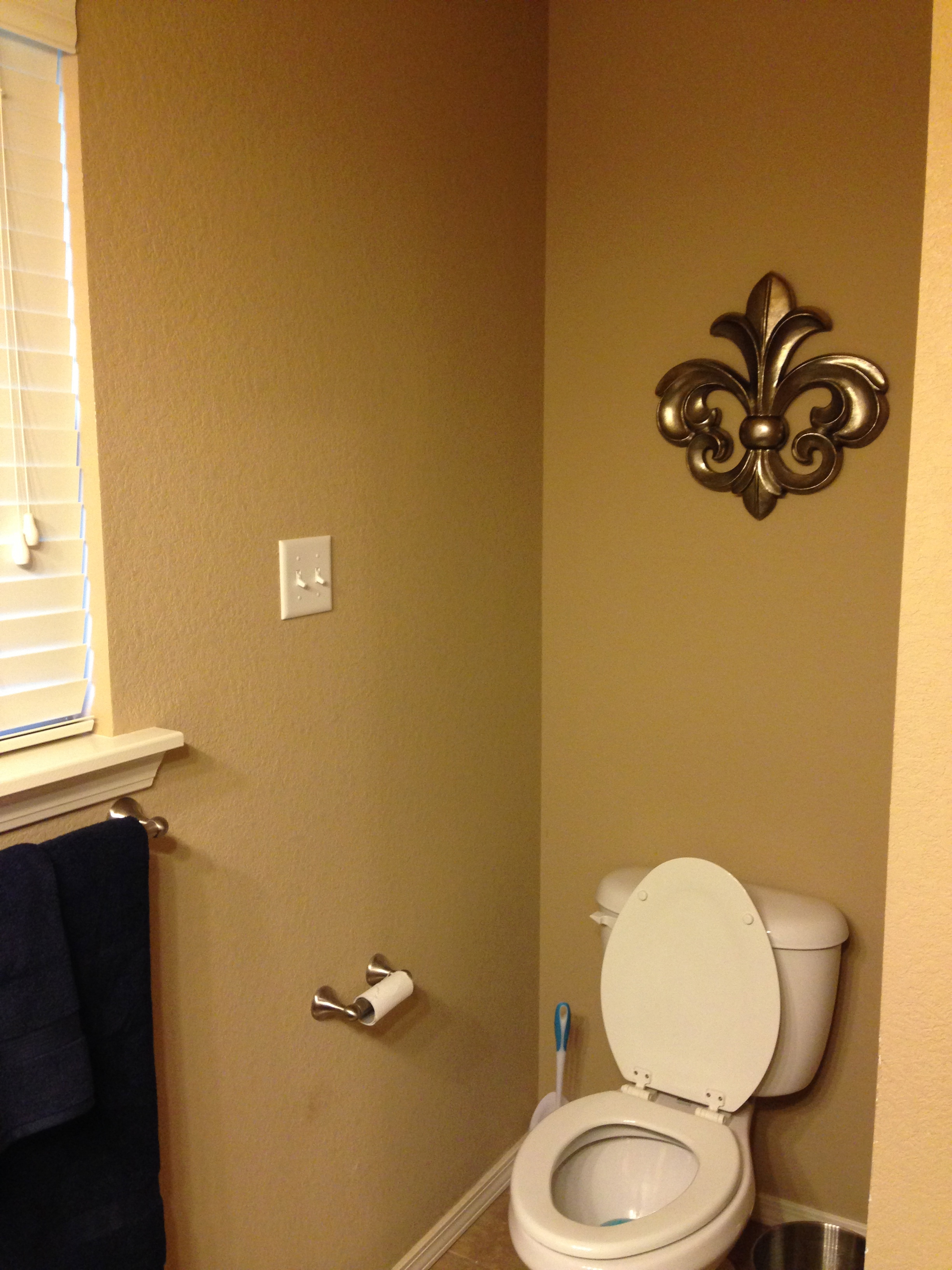 Sorry for the toilet shot but I LOVE my fleur de lis over my toilet  I got  it at Hobby Lobby half price of course. Master Bathroom Tour   Ricci Alexis