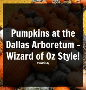 Pumpkins at the Dallas Arboretum – Wizard of Oz Style!
